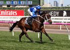 Winx wins the Seppelt Turnbull Stakes at Flemington by 6 1/2 lengths
