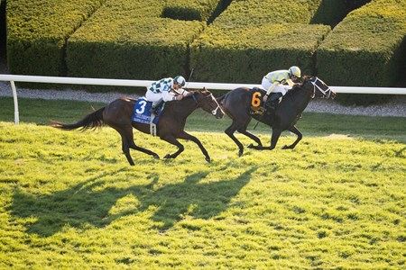 La Coronel with Jose Lezcano  up won the Queen Elizabeth II Challenge Cup at Keeneland on Test , Saturday Oct. 14, 2017  in Lexington, Ky.