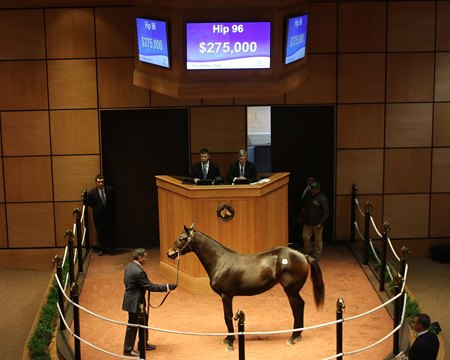 Hip 96, a Ghostzapper filly, sells for $275,000
