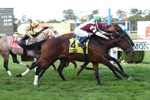 In a blanket finish Dalarna gets his nose on the wire to win the English Channel Stakes at Belmont Park