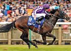 Multiple group 1 winner U S Navy Flag will seek a return to form in the French Two Thousand Guineas at ParisLongchamp