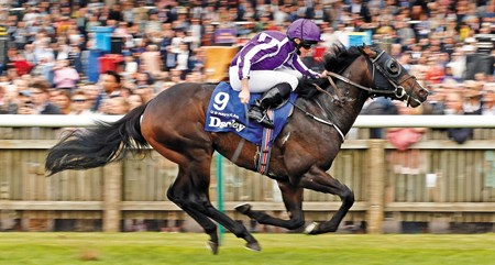 "U S NAVY FLAG (Ryan Moore) wins The Darley Dewhurst Stakes Newmarket 14 Oct 2017 - Pic Steven Cargill / Racingfotos.com  THIS IMAGE IS SOURCED FROM AND MUST BE BYLINED ""RACINGFOTOS.COM"""