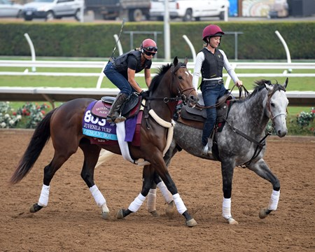 Catholic Boy Breeders' Cup horses on track at Del Mar racetrack on Oct. 28, 2017 Del Mar Thoroughbred Club in Del Mar, CA.