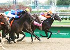 Fight On digs in to win the Spendthrift Juvenile Stallion Stakes Oct. 29 at Churchill Downs