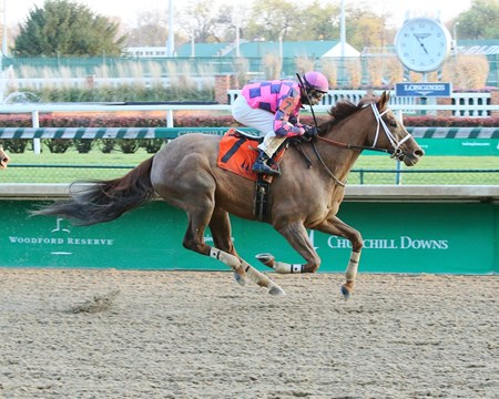 Western Elegance - Allowance Win, Churchill Downs - November 19, 2017