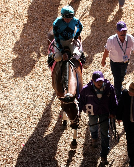 Roy H with Kent Desormeaux head to the track prior to winning the Breeders' Cup Sprint at Del Mar on November 4, 2017