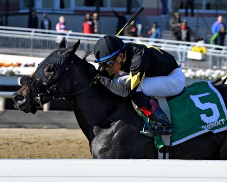 I Still Miss You wins the 2017 Key Cents Stakes