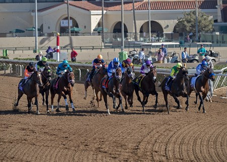 After leaving the gate in the Breeders' Cup Sprint at Del Mar on November 4th 2017