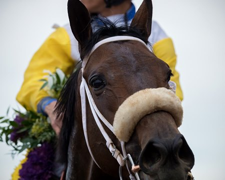 Forever Unbridled after winning the Longines Breeders' Cup Distaff
