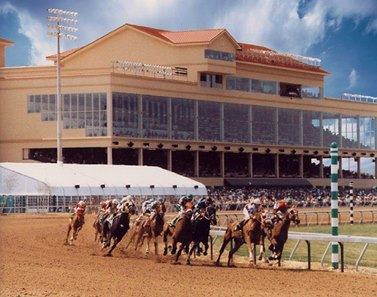 Horses round the first turn at Retama Park