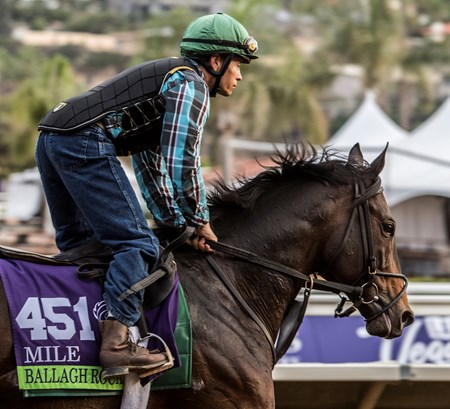 Ballagh Rocks out for morning exercise at Del Mar Nov. 2, 2017.