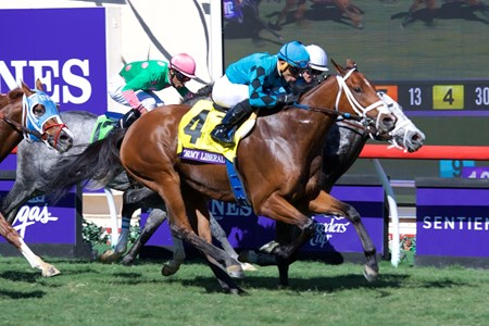 Stormy Liberal wins the Breeders Cup Turf Sprint on November 4, 2017