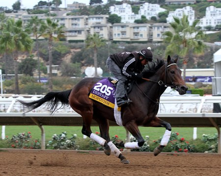 Mopotism on the track at Del Mar preparing for the Breeders' Cup Distaff on November 1, 2017