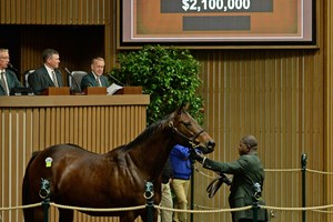 For Royalty Claims New Top Keeneland Price At 2 1m