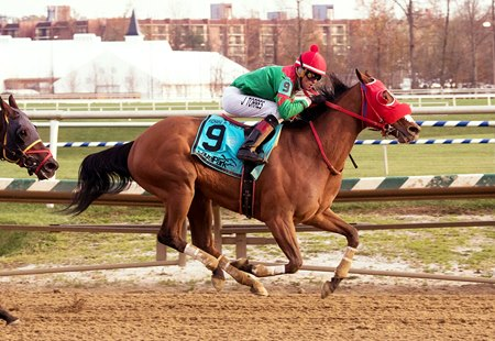 Afleet Willy wins the Richard W. Small Stakes at Laurel Park