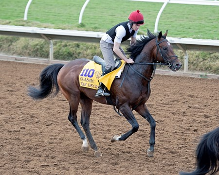 War Decree Breeders' Cup horses on track at Del Mar racetrack on Nov. 2, 2017 Del Mar Thoroughbred Club in Del Mar, CA.
