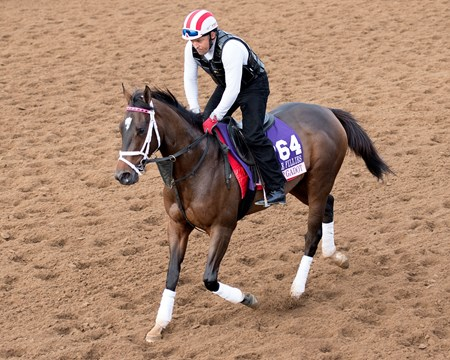 Wonder GadotWin the Space Breeders' Cup horses on track at Del Mar racetrack on Nov. 2, 2017 Del Mar Thoroughbred Club in Del Mar, CA.