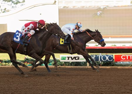Dream Tree (inside) holds off a closing Midnight Bisou in the Desi Arnaz Stakes at Del Mar
