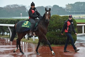 Iquitos preparing for Japan Cup Nov. 23