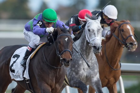 Jockey Eurico Da Silva guides Gamble's Ghost to victory in the 2017 Maple Leaf Stakes at Woodbine for owner Ivan Dalos and trainer Josie Carroll.