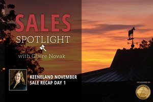 2017 Keeneland November Sale Recap Day 1