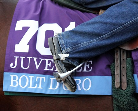 Bolt d'Oro exercise saddle cloth at Del Mar on November 2, 2017.