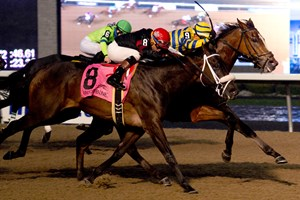 Be Vewy Vewy Quiet takes the Frost King Stakes over Silent Sting (outside)