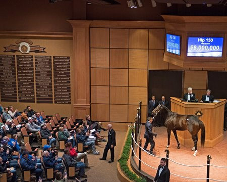Tepin sells to representatives of Coolmore Stud for $8 million at the Fasig-Tipton November sale