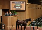 Xavier Bloodstock International went to $260,000 for Aqua Regia who is in foal to Dialed In