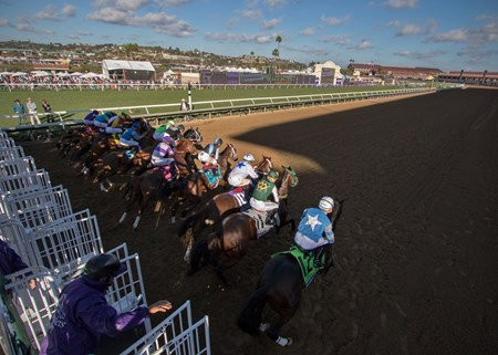 Leaving the gate in the Sentient Jet Breeders Cup Juvenile at Del Mar on November 3rd 2017