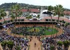 Del Mar hosted the Breeders' Cup World Championships for the first time this year