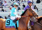 Lady Eli with Irad Ortiz in the post parade prior to the Breeders' Cup Filly & Mare Turf at Del Mar on November 4, 2017