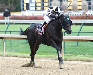 Limousine Liberal pulls away in the Bet on Sunshine Stakes at Churchill Downs