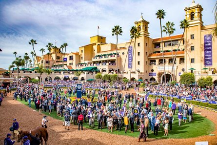 Tax rules had a significant impact on handle at this year's Breeders' Cup World Championships at Del Mar