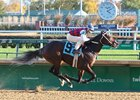 Principe Guilherme breaks his maiden by 6 1/4 lengths Nov. 10 at Churchill Downs