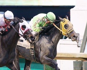 Tricky Escape's win in the Cardinal Handicap has been reinstated to grade 3 status