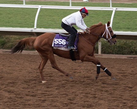 Finest City Breeders' Cup horses on track at Del Mar racetrack on Nov. 2, 2017 Del Mar Thoroughbred Club in Del Mar, CA.