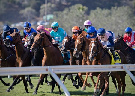 After leaving the gate in the Breeders' Cup Filly & Mare Turf at Del Mar on November 3rd 2017