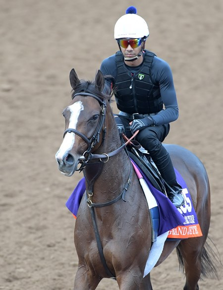 Grand Jete Breeders' Cup horses on track at Del Mar racetrack on Nov. 1, 2017 Del Mar Thoroughbred Club in Del Mar, CA.
