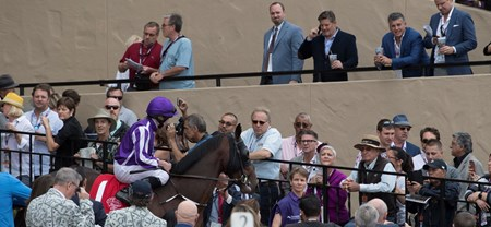 Mendelssohn makes his entrance before the Breeders Cup Juvenile Turf on November 3, 2017.