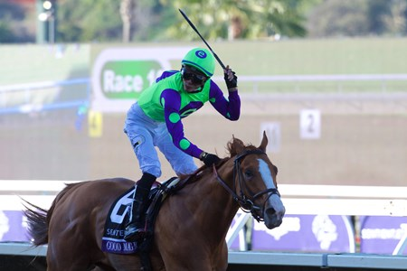 Good Magic wins with Breeders Cup Juvenile on November 4, 2017.