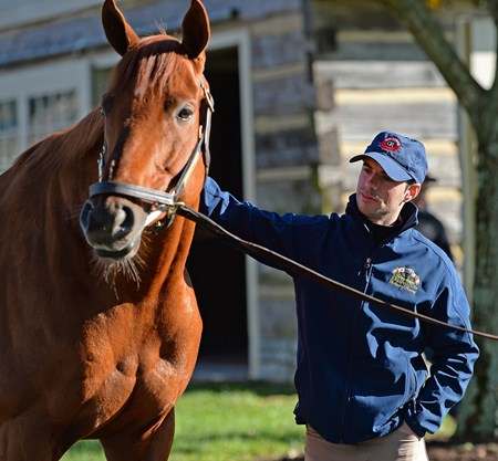 Florent Geroux with Gun Runner Horses at the Keeneland November sale on Nov. 9, 2017 Keeneland in Lexington, KY.