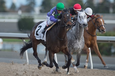 Jockey Eurico Da Silva guides Gamble's Ghost to victory in the 2017 Maple Leaf Stakes at Woodbine for owner Ivan Dalos and trainer Josie Carr