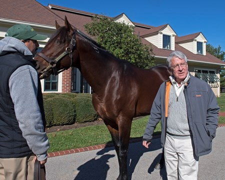 Robert S. (Shell) Evans with Quality Road at Lane's End stallion show.  Horses at the Keeneland November sale on Nov. 9, 2017 Keeneland in Lexington, KY.