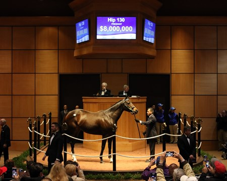 Hip130, Tepin, 2017 Fasig-Tipton November Sale