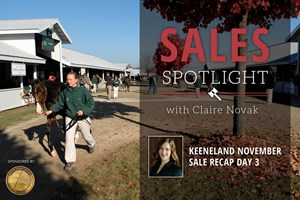 2017 Keeneland November Sale Day 3 Recap