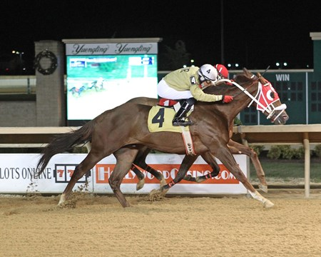 Frijoles - Maiden Win, Charles Town, November 24, 2017 First winner Salt and Light