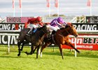 Saxon Warrior (inside) and Roaring Lion duel to the wire in the Racing Post Trophy Stakes
