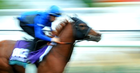 Breeders' Cup Juvenile Turf contender Masar