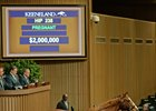 Enchanted Rock goes for $2 million at the Keeneland November sale